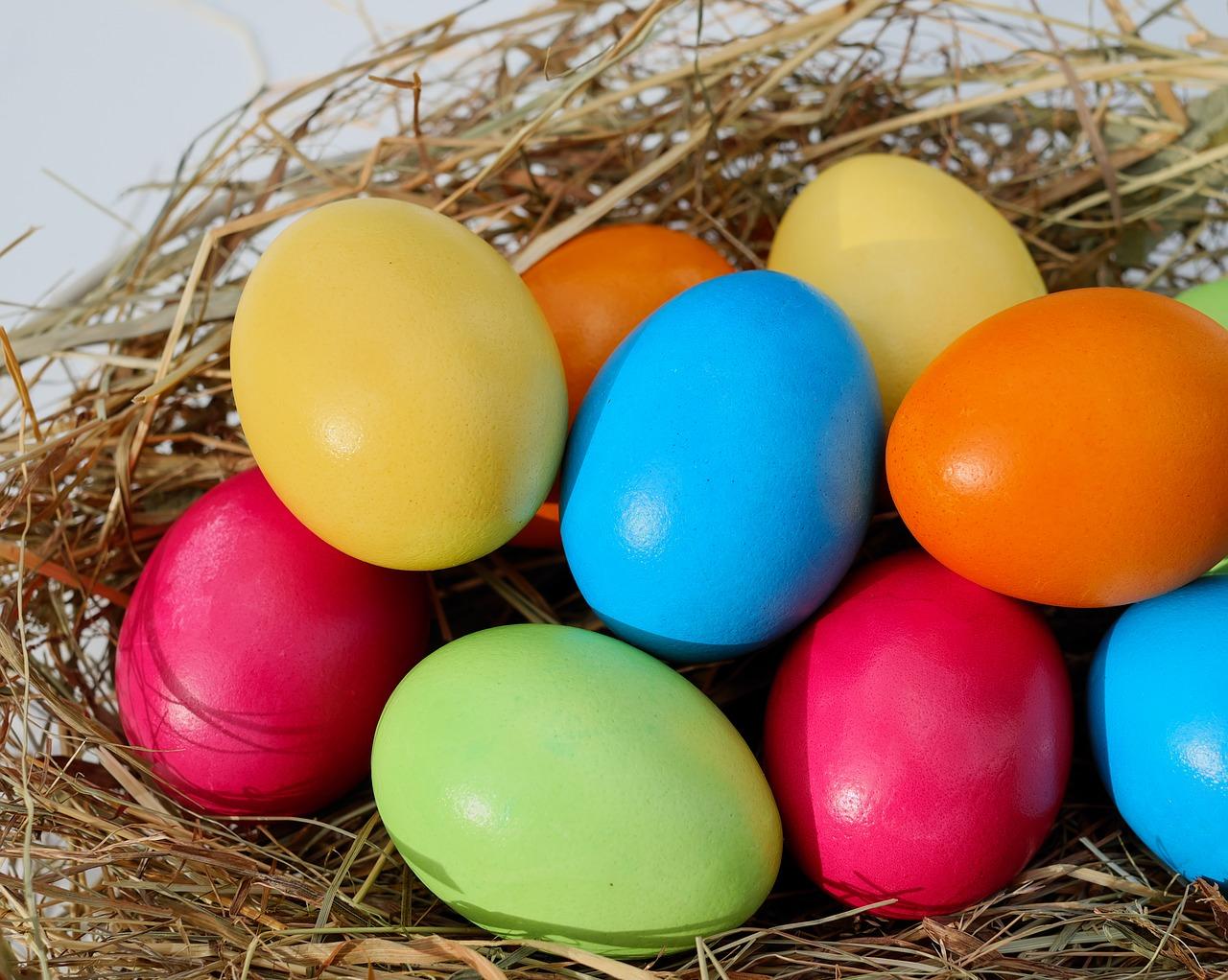 卵 何 日 ゆで 個 一